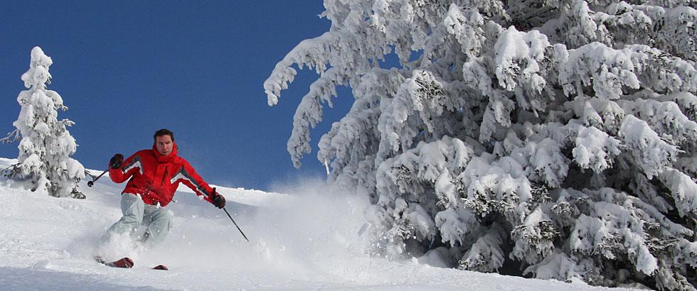 Skifahren in Geyersberg Bayerischer Wald