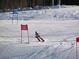 Skirennen Bayerischer Wald